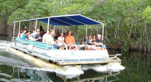Black River Safari and Pelican Bar Tour