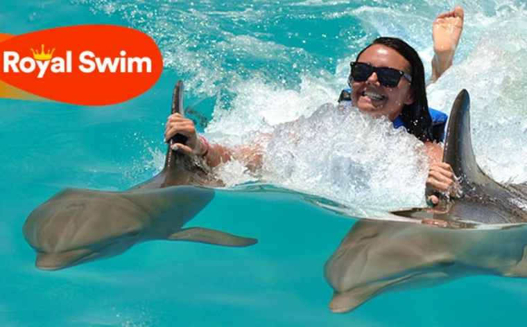 Dolphin_Cove_Runaway_Bay